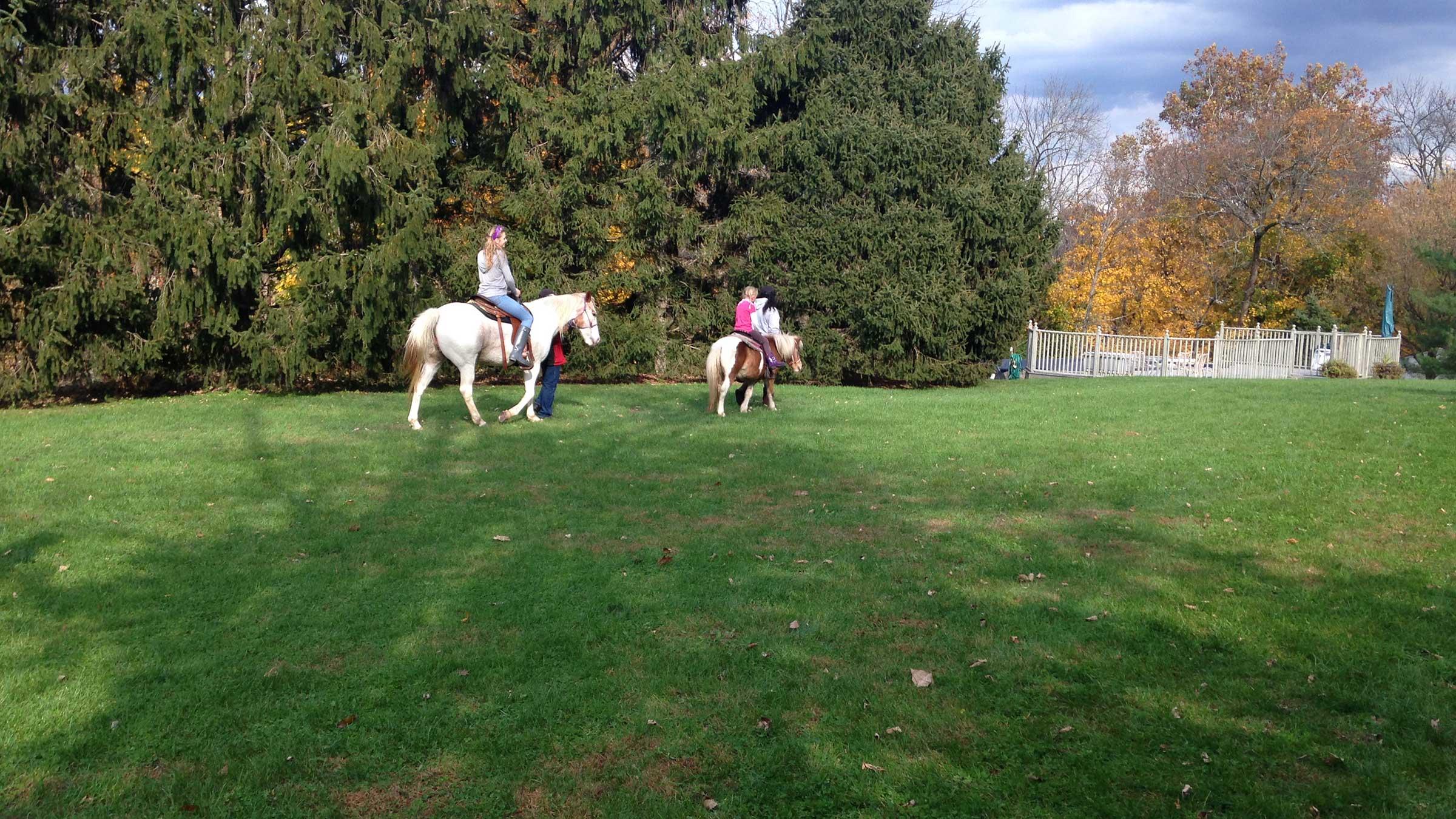 Pony Rides at Parties