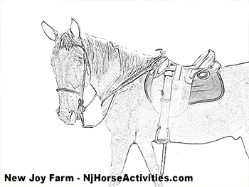Sample coloring page of a horse already saddled