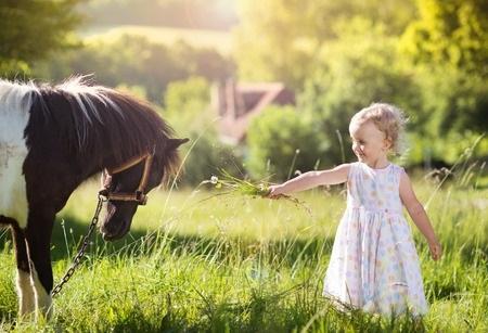 Popular Pony Parties: My Little Pony